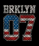 Sportowy Brooklyn Obraz Stock