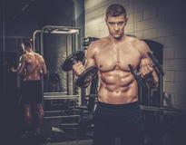 Sportowy mężczyzna robi ćwiczeniom z dumbbells w Gym studiu fotografia stock