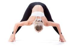 Sportreeks: yoga Stock Afbeeldingen