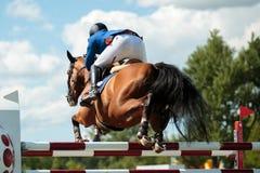 Sports équestres Image libre de droits