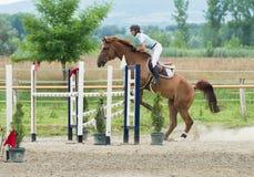Sports équestres, cheval sautant, sauter d'exposition photos stock