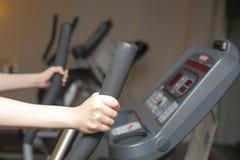 Sports activity royalty free stock photo