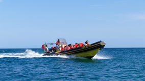 Sports aquatiques en vacances - Jetboat Photo libre de droits