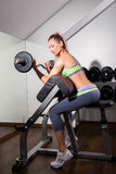 Sports background. Muscular fit woman exercising. Royalty Free Stock Image