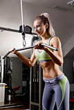 Sports background. Muscular fit woman exercising. Stock Images