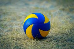 Sports ball on a grass field royalty free stock image