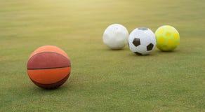 Sports balls on grass field. Various sports balls on grass field Stock Image