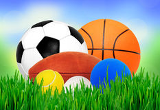 Sports balls in green grass over blurred nature background Stock Images