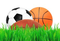 Sports balls on green grass over white Royalty Free Stock Image