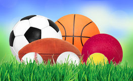 Sports balls over green grass over nature background Royalty Free Stock Photography