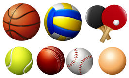 Sports balls on white Royalty Free Stock Image