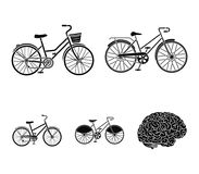 Sports bike and other types.Different bicycles set collection icons in black style vector symbol stock illustration web. Stock Photos