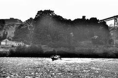 Sports boat on river Douro Stock Photography