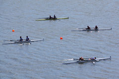 Sports boats with pairs of rowers on water Royalty Free Stock Image