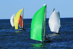 Sports boats sailing Stock Photography