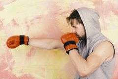 Sports, box and fight concept. Boxer with concentrated face. Trains to hit. Guy in grey sleeveless hoodie wears red leather boxing gloves. Man with messy hair stock photo