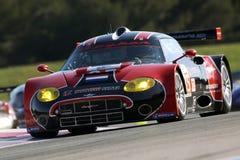 Sports Car,Spyker C8 Laviolette GT2-R(LMS). Le Mans Series race, Circuit LE CASTELLET(FRANCE); April 10th 2010. Spyker C8 Laviolette GT2-R,#SPYKER SQUADRON Stock Images
