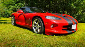 Sports Cars, Dodge Viper. Dodge Viper RT/10, V 10 - 2-door roadster (1994 ), sports car Stock Images