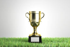 Sports competition concept. Golden winner`s cup with empty plate on white background with grass. Sports competition concept. Mock up, 3D Rendering Stock Photography