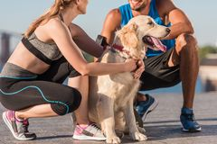Sports couple with dog. Sports couple with golden retriever dog in city at daytime Stock Photos