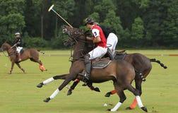 Sports de polo Photo libre de droits