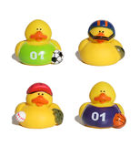 Sports Ducks Royalty Free Stock Images