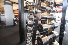 Sports dumbbells. dumbbells in the gym stock photography