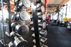 Sports dumbbells. dumbbells in the gym royalty free stock photo