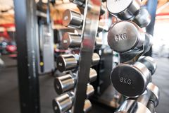 Sports dumbbells. dumbbells in the gym stock photo
