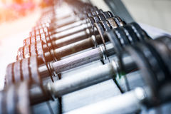 Sports dumbbells. Dumbbells in modern sports club. Weight Training Equipment Royalty Free Stock Photos