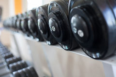 Sports dumbbells. In modern sports club. Weight Training Equipment Stock Images