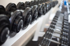 Sports dumbbells. In modern sports club. Weight Training Equipment Royalty Free Stock Photos