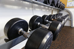 Sports dumbbells Royalty Free Stock Photo