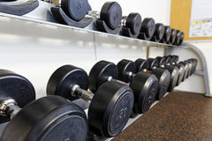 Sports dumbbells Royalty Free Stock Image