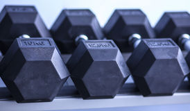 Sports dumbbells in modern sports club.  Stock Image