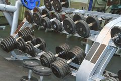 Sports dumbbells in modern sports club Royalty Free Stock Image