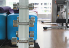 Sports dumbbells in modern sports club Stock Photography