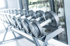 Sports dumbbells in modern sports club. Weight Training Equipment Stock Photo