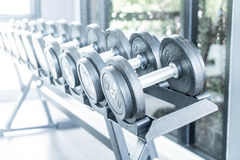 Sports dumbbells in modern sports club. Weight Training Equipment Royalty Free Stock Photography