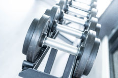Sports dumbbells in modern sports club. Weight Training Equipment Stock Image