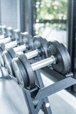 Sports dumbbells in modern sports club. Weight Training Equipment Royalty Free Stock Image
