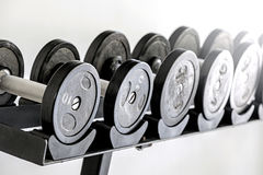 Sports dumbbells in  sports club Stock Images