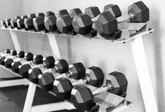 Sports dumbbells, Weight Training Equipment. In sports club Stock Photo