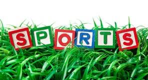 Sports en plein air Image libre de droits