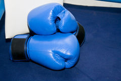 Sports equipment for boxing Royalty Free Stock Images