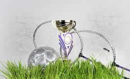 Sports equipment on the grass, badminton, ball, cup. Sports equipment on green grass, badminton, ball, cup stock photography