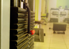 Sports equipment in the gym for exercise Stock Photos