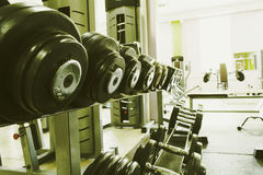 Sports equipment in the gym for exercise Stock Image