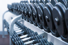 Sports equipment lying on shelves.Gym.Dumbbells Royalty Free Stock Photo
