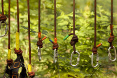 Sports equipment  safety rope. In the forest Stock Photo
